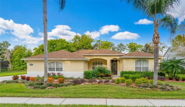 21739 Mccallie Court, Land O Lakes, FL 34637 (MLS #T3163942) :: Team Bohannon Keller Williams, Tampa Properties