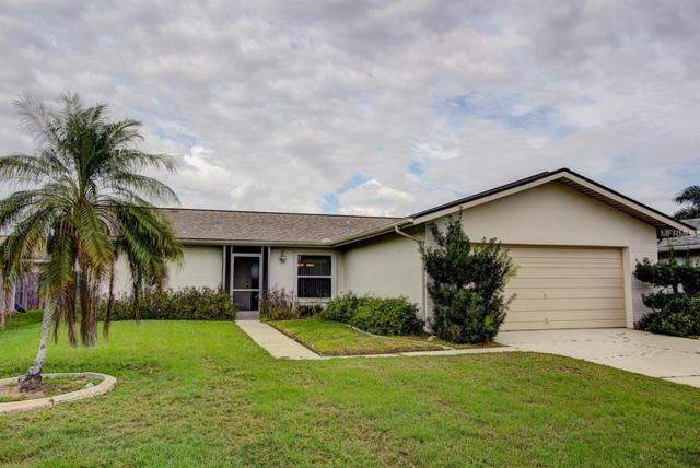 9782 Deerfoot Drive, Fort Myers, FL 33919 (MLS #T3163947) :: The Duncan Duo Team