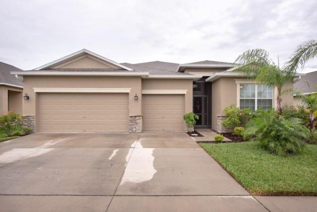 2433 Dakota Rock Drive, Ruskin, FL 33570 (MLS #T3163956) :: Team Bohannon Keller Williams, Tampa Properties