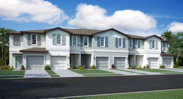7601 Ginger Lily Court, Tampa, FL 33619 (MLS #T3163971) :: The Light Team