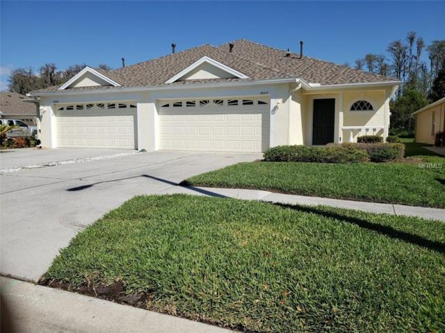 19347 Everton Place, Land O Lakes, FL 34638 (MLS #T3163972) :: White Sands Realty Group