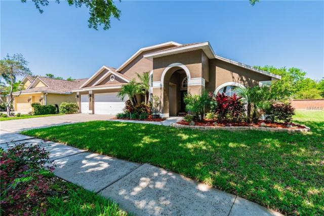 6917 Cohasset Circle, Riverview, FL 33578 (MLS #T3163987) :: Team Bohannon Keller Williams, Tampa Properties