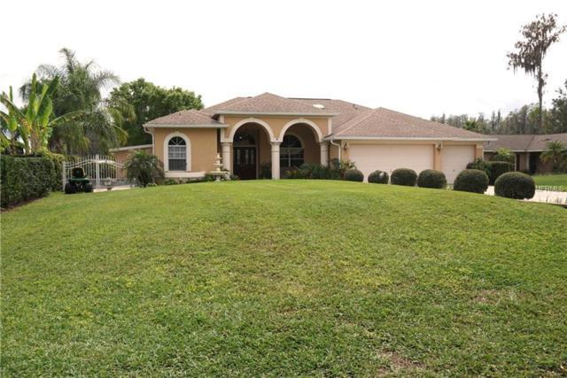 3112 Flat Rock Place, Land O Lakes, FL 34639 (MLS #T3163999) :: Zarghami Group