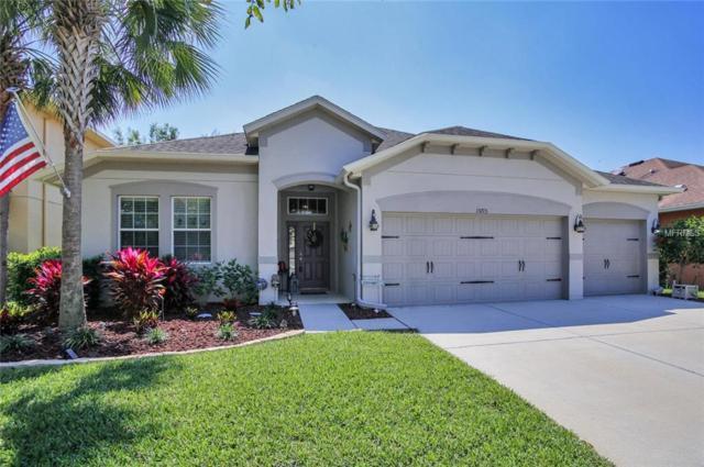 15713 Starling Dale Lane, Lithia, FL 33547 (MLS #T3164036) :: NewHomePrograms.com LLC