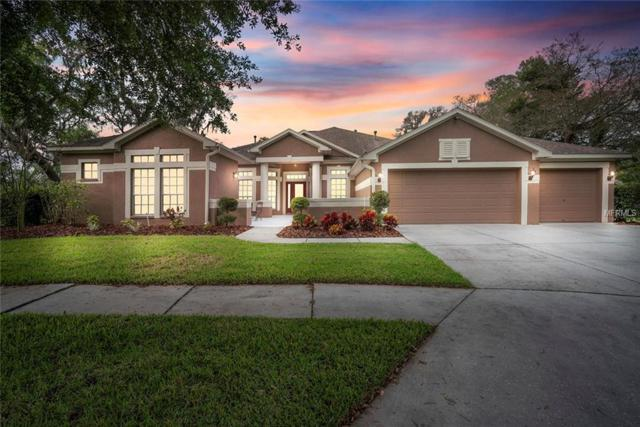 15241 Kestrelrise Drive, Lithia, FL 33547 (MLS #T3164055) :: Cartwright Realty