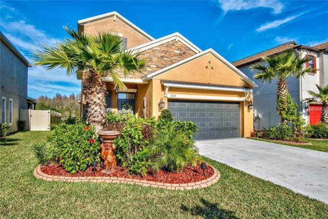 1555 Ludington Avenue, Wesley Chapel, FL 33543 (MLS #T3164073) :: NewHomePrograms.com LLC