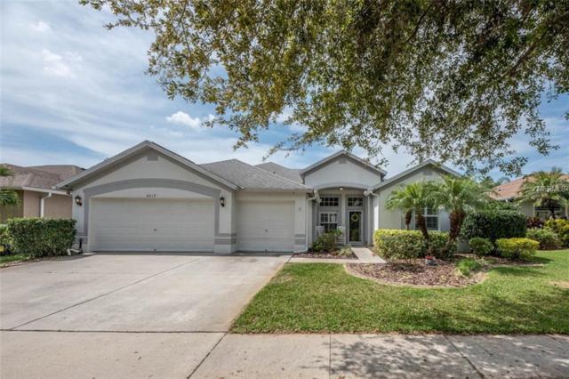 6019 Palomaglade Drive, Lithia, FL 33547 (MLS #T3164076) :: Team Bohannon Keller Williams, Tampa Properties