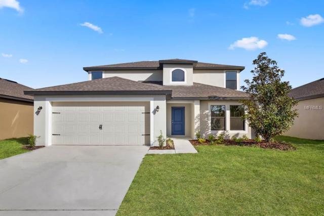 1107 Wynnmere Walk Avenue, Ruskin, FL 33570 (MLS #T3164082) :: Team Bohannon Keller Williams, Tampa Properties