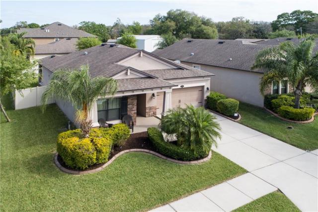 11502 Scarlet Ibis Place, Riverview, FL 33569 (MLS #T3164089) :: Team Bohannon Keller Williams, Tampa Properties