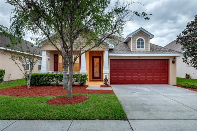 30822 Pumpkin Ridge Drive, Wesley Chapel, FL 33543 (MLS #T3164090) :: Delgado Home Team at Keller Williams
