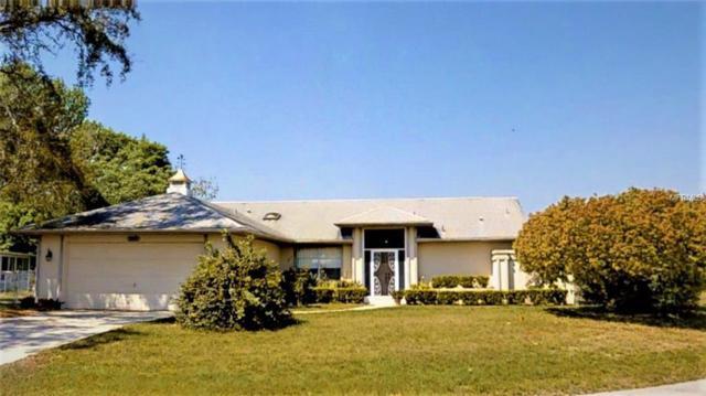 391 Dandelion Court, Spring Hill, FL 34606 (MLS #T3164095) :: Dalton Wade Real Estate Group