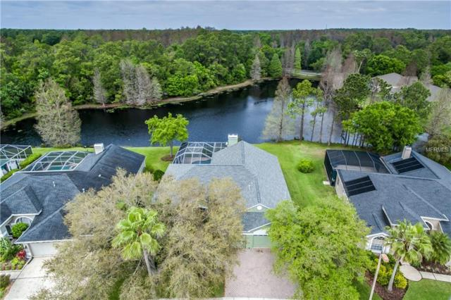 12001 Middlebury Drive, Tampa, FL 33626 (MLS #T3164108) :: Team Bohannon Keller Williams, Tampa Properties