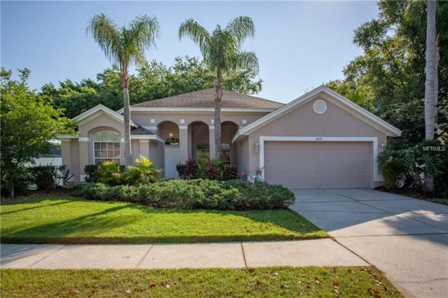 5834 Summit Lane, Wesley Chapel, FL 33545 (MLS #T3164115) :: Delgado Home Team at Keller Williams