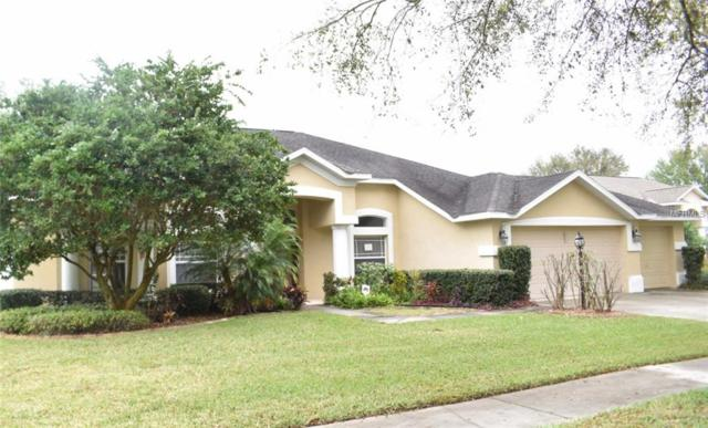 3914 Whisper Grove Court, Valrico, FL 33594 (MLS #T3164118) :: Lovitch Realty Group, LLC