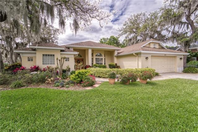 3219 Concord Way, Plant City, FL 33566 (MLS #T3164121) :: Medway Realty
