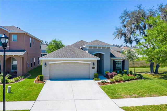 19222 Early Violet Drive, Tampa, FL 33647 (MLS #T3164123) :: Team 54