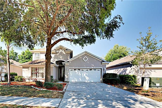 15451 Pepper Pine Court, Land O Lakes, FL 34638 (MLS #T3164164) :: Team 54