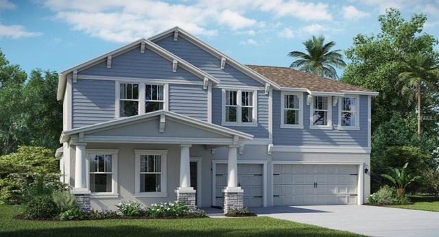 10258 Love Story Street, Winter Garden, FL 34787 (MLS #T3164167) :: Mark and Joni Coulter | Better Homes and Gardens