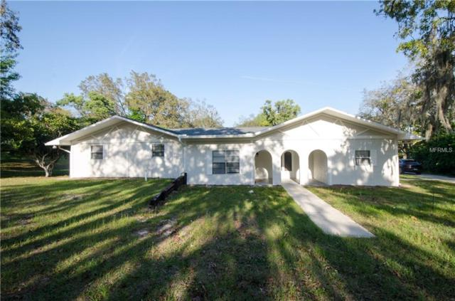 18724 Sugarberry Lane, Spring Hill, FL 34610 (MLS #T3164179) :: The Duncan Duo Team