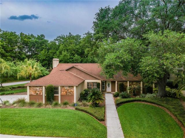 505 Cullen Court, Lutz, FL 33548 (MLS #T3164181) :: The Nathan Bangs Group