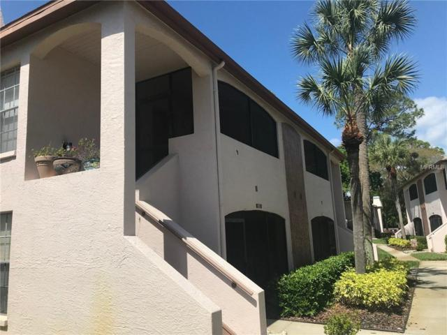 Address Not Published, Palm Harbor, FL 34684 (MLS #T3164186) :: The Duncan Duo Team