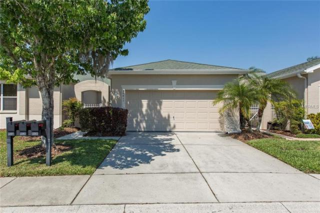 20811 Jaffa Lane, Land O Lakes, FL 34637 (MLS #T3164187) :: Team 54