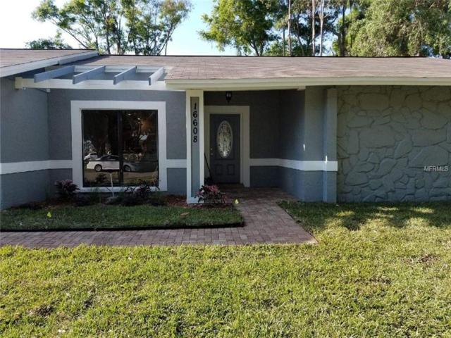 16608 Vallely Drive, Tampa, FL 33618 (MLS #T3164197) :: RE/MAX Realtec Group