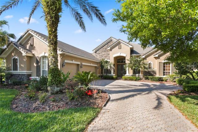 14704 Castelletto Drive, Tampa, FL 33626 (MLS #T3164199) :: The Nathan Bangs Group