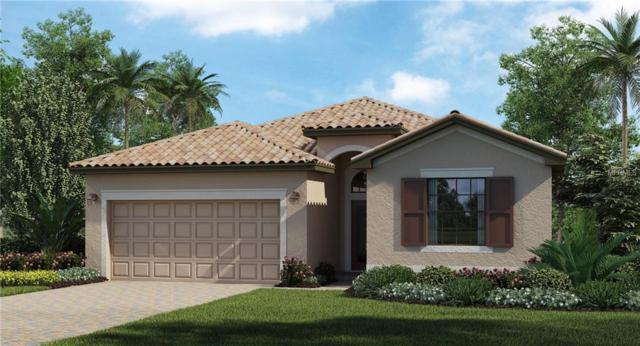 19377 Cruise Drive, Venice, FL 34292 (MLS #T3164217) :: Baird Realty Group