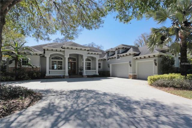 15315 Lake Maurine Drive, Odessa, FL 33556 (MLS #T3164239) :: The Nathan Bangs Group