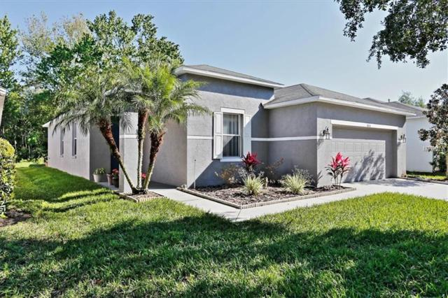 16836 Hawkridge Road, Lithia, FL 33547 (MLS #T3164249) :: Team Bohannon Keller Williams, Tampa Properties