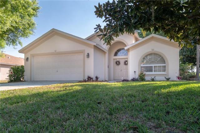 19801 Wyndmill Circle, Odessa, FL 33556 (MLS #T3164263) :: Team 54
