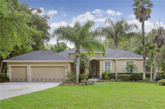 2435 Fox Forest Drive, Lutz, FL 33549 (MLS #T3164267) :: Griffin Group