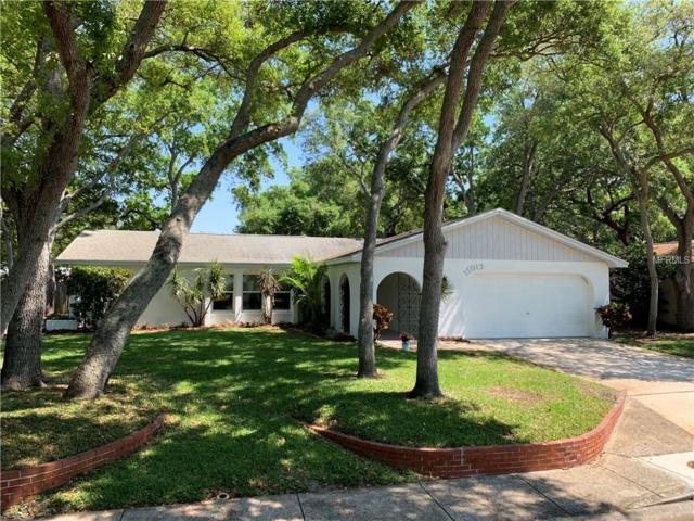 11013 117TH Street, Largo, FL 33778 (MLS #T3164269) :: Dalton Wade Real Estate Group