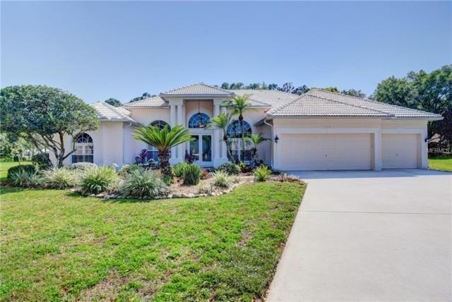 5201 Laurel Pointe Drive, Valrico, FL 33594 (MLS #T3164280) :: Lovitch Realty Group, LLC
