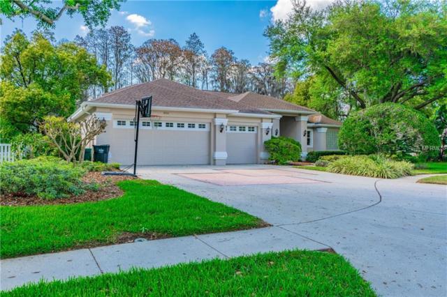18310 Pleasant Ridge Place, Lutz, FL 33548 (MLS #T3164301) :: Delgado Home Team at Keller Williams