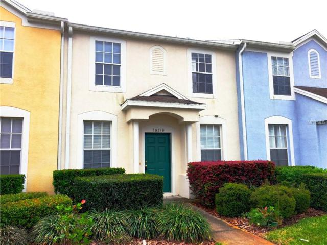 30210 Swinford Lane, Wesley Chapel, FL 33543 (MLS #T3164316) :: Team 54