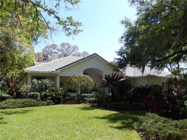 8918 Eagle Watch Drive, Riverview, FL 33578 (MLS #T3164336) :: Team Bohannon Keller Williams, Tampa Properties