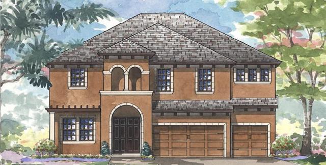 11343 Hawks Fern Drive, Riverview, FL 33578 (MLS #T3164339) :: RE/MAX Realtec Group