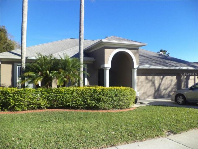 4042 Whittner Drive, Land O Lakes, FL 34639 (MLS #T3164352) :: Team 54