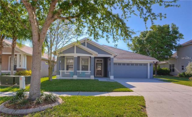 7740 Grasmere Drive, Land O Lakes, FL 34637 (MLS #T3164373) :: Lovitch Realty Group, LLC