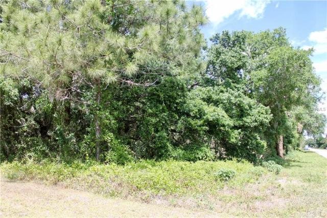 121 Evaro Drive, Port Charlotte, FL 33954 (MLS #T3164400) :: Premium Properties Real Estate Services