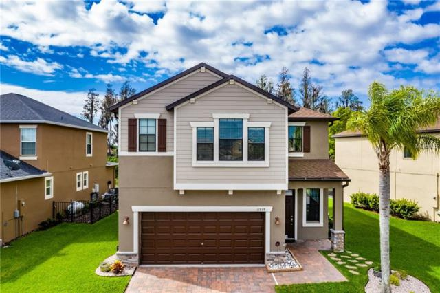 11878 Lake Boulevard, New Port Richey, FL 34655 (MLS #T3164401) :: Lock & Key Realty