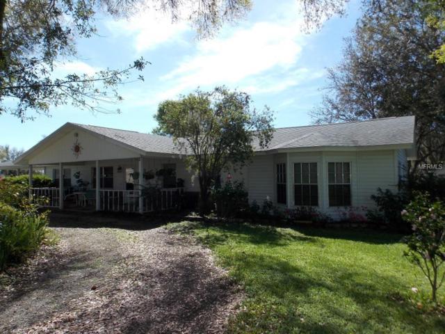 35256 Blanton Road, Dade City, FL 33523 (MLS #T3164412) :: Lock & Key Realty