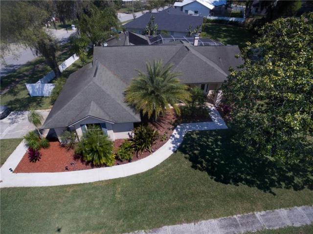 602 Gay Road, Seffner, FL 33584 (MLS #T3164426) :: Team 54