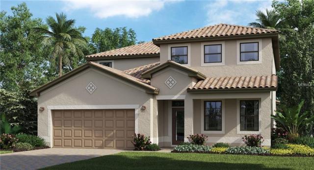 13682 Vancanza, Venice, FL 34293 (MLS #T3164457) :: Cartwright Realty