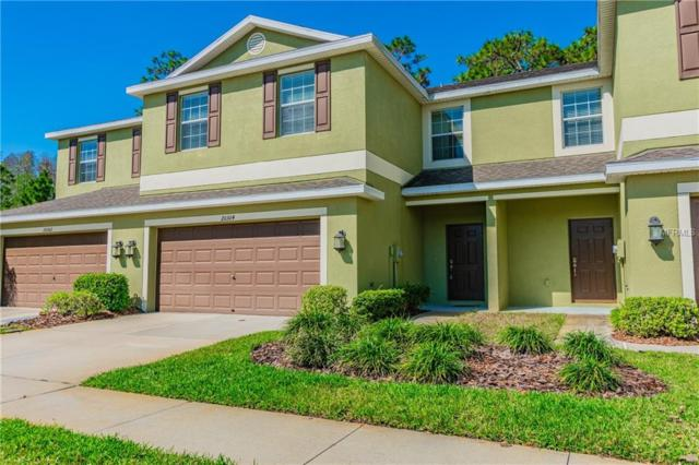 20304 Starfinder Way, Tampa, FL 33647 (MLS #T3164499) :: Team Suzy Kolaz