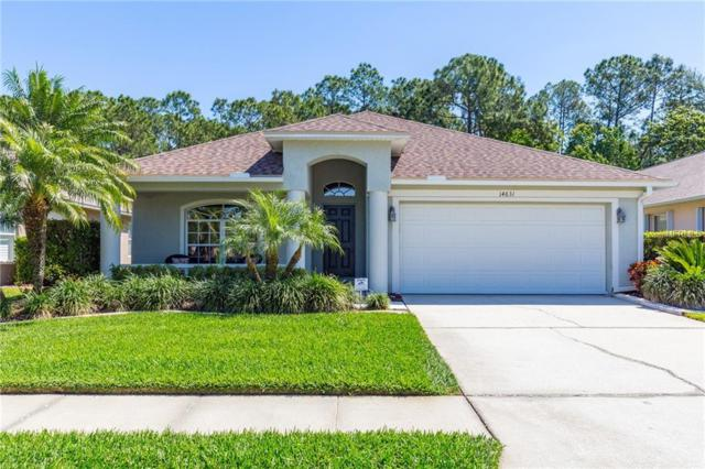 14631 Corkwood Drive, Tampa, FL 33626 (MLS #T3164509) :: Gate Arty & the Group - Keller Williams Realty