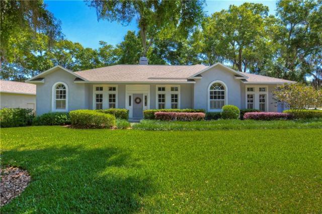 501 Citrus Wood Lane, Valrico, FL 33594 (MLS #T3164530) :: Medway Realty