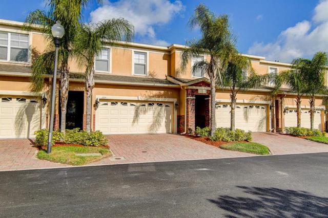 1575 Hillview Lane, Tarpon Springs, FL 34689 (MLS #T3164542) :: Cartwright Realty